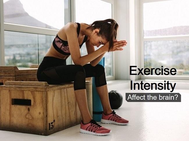 運動強度會影響腦部神經