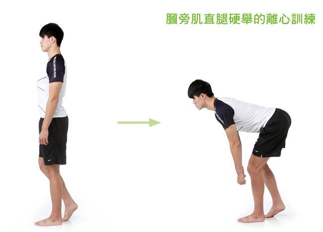 膕旁肌直腿硬舉的離心收縮訓練