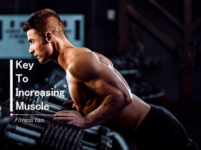 增肌的訣竅不在增加重量