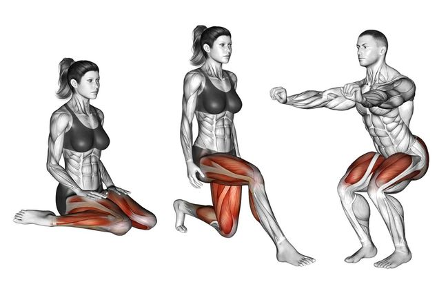 蹲和跪姿的肌肉活動度