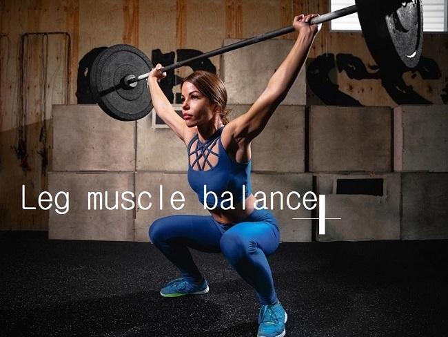股四頭肌與腿後肌的訓練