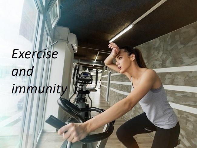 運動會造成免疫力下降