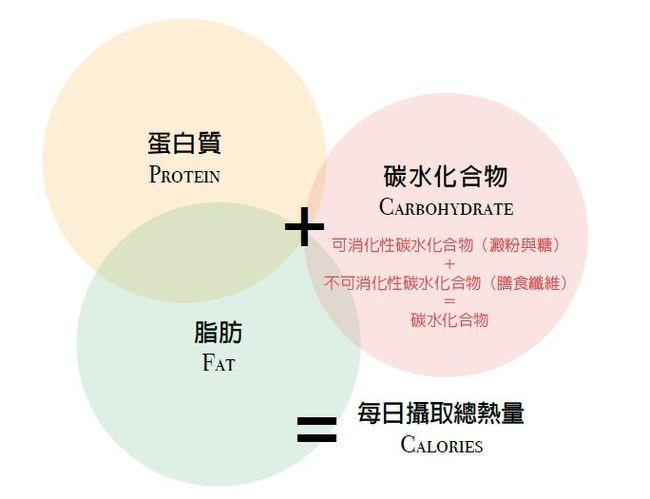 三大營養素的攝取量