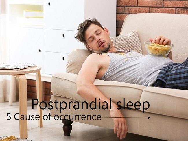 飯後愛睡的原因