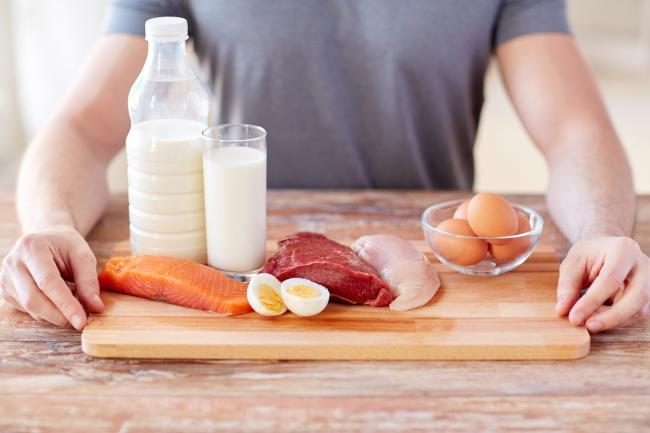 蛋白質與肌肉