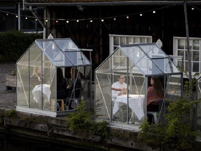 阿姆斯特丹的檢疫溫室