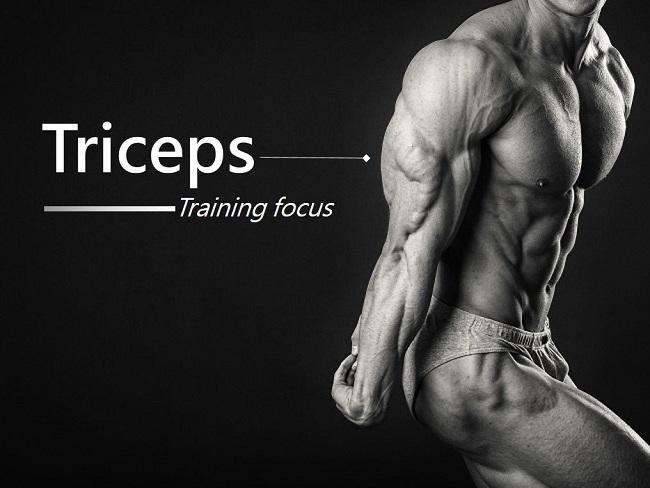 肱三頭肌訓練該注意什麼