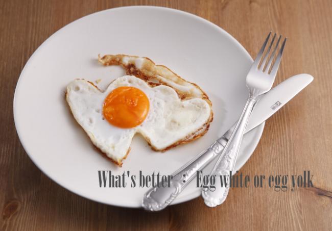 蛋黃與蛋白