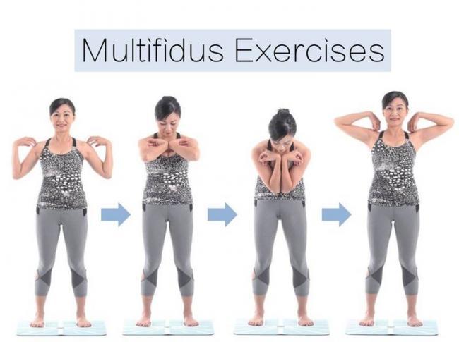 頸胸腰多裂肌訓練