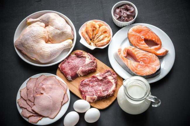 蛋白質食物