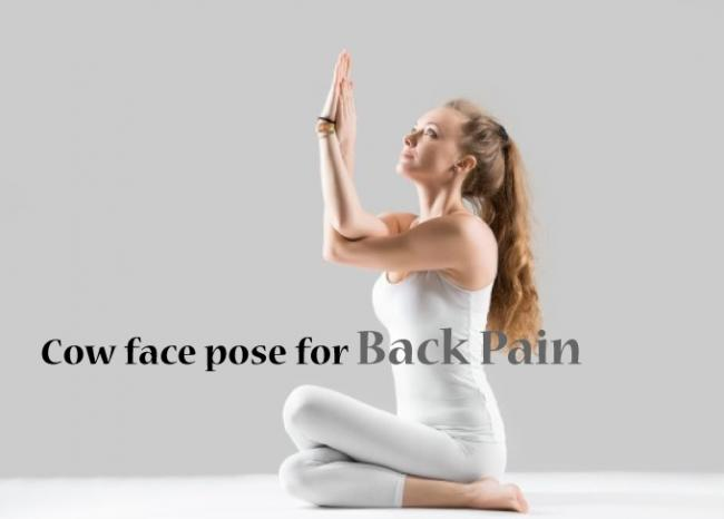 瑜伽牛面式