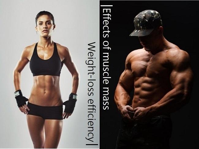 易瘦易胖體質取決肌肉量