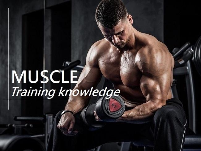 有想過練到的是深層還是淺層肌肉?