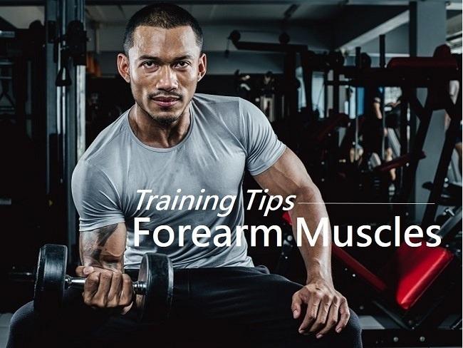 前臂肌群真的要訓練嗎
