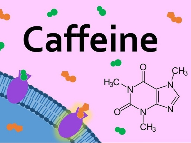 咖啡因與腺苷受體