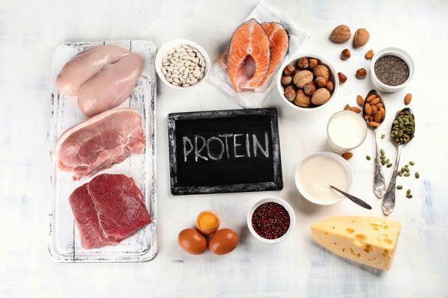富含蛋白質的食物