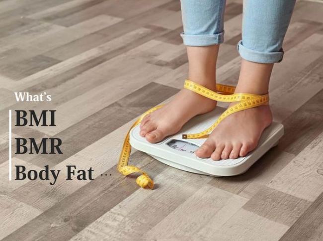 體脂、BMI等身體指數