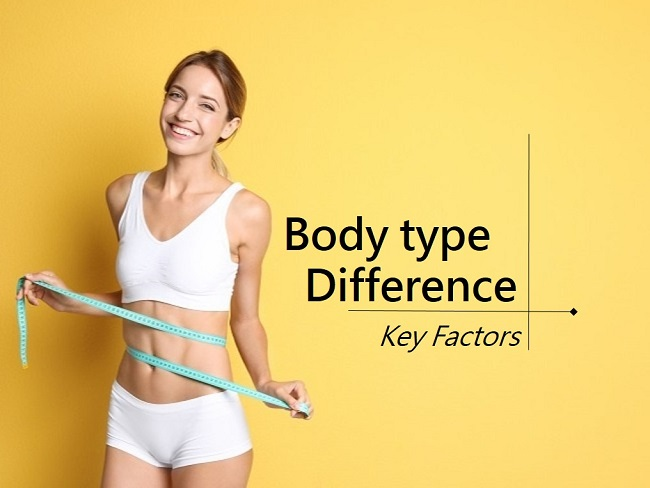 體型差異性的關鍵