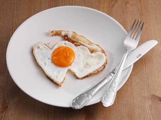 蛋白質會降低飢餓感