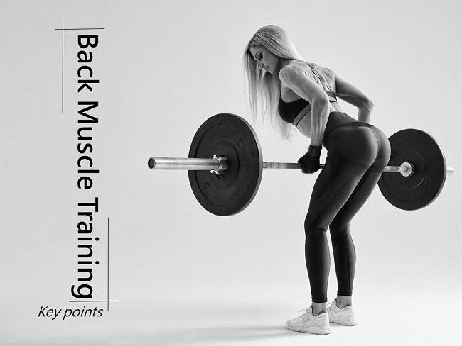 背部肌群訓練技巧與關鍵