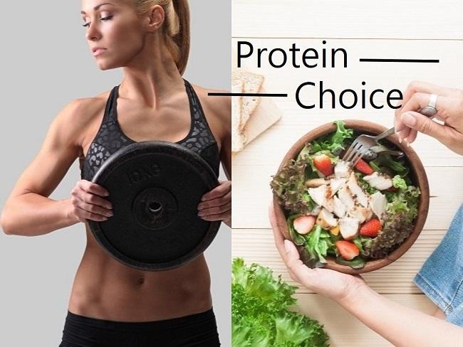 蛋白質補充的選擇