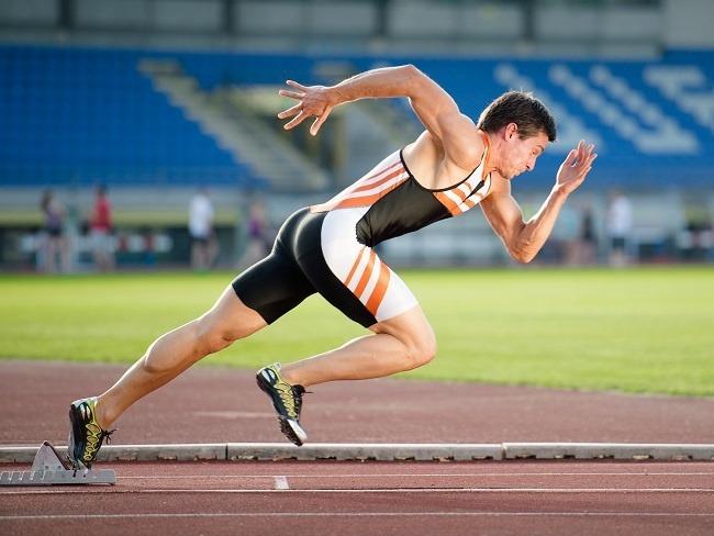 快速啟動的II型肌纖維