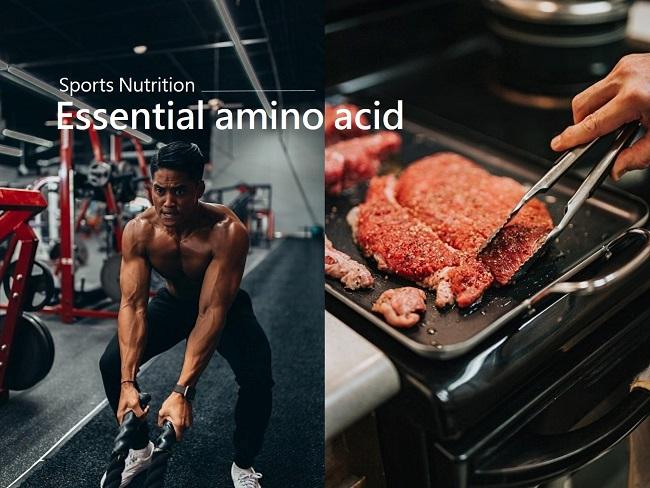 增強肌力必需要補充亮胺酸
