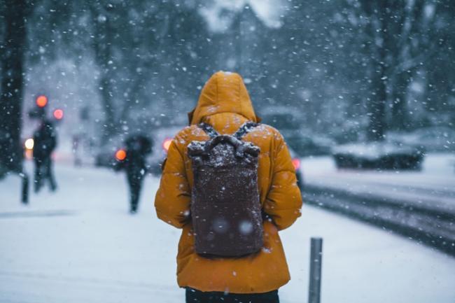 低溫的天氣與脂肪有關