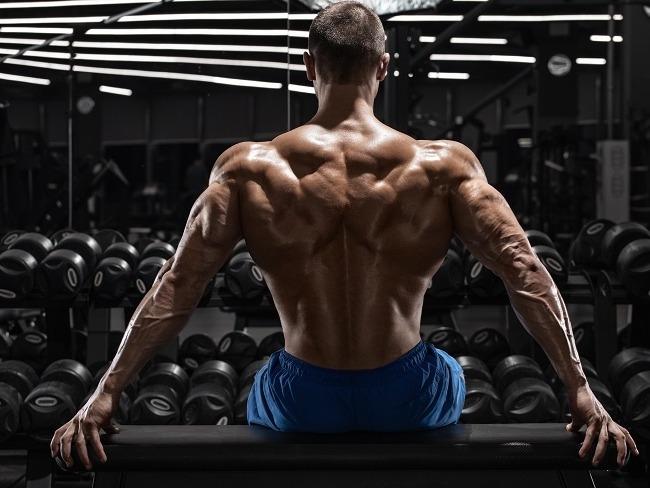 背部肌群的訓練技巧
