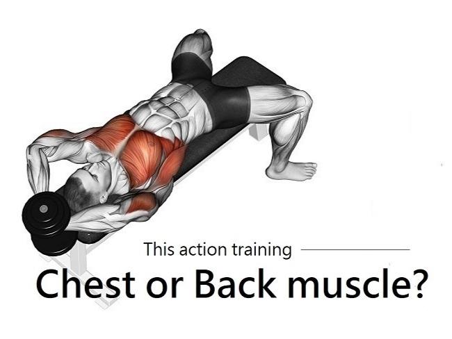 仰臥啞鈴拉舉練哪個肌肉