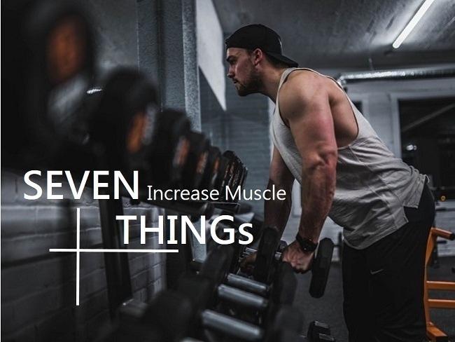 增加肌肉量的關鍵點