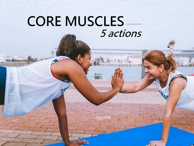 核心肌群訓練動作