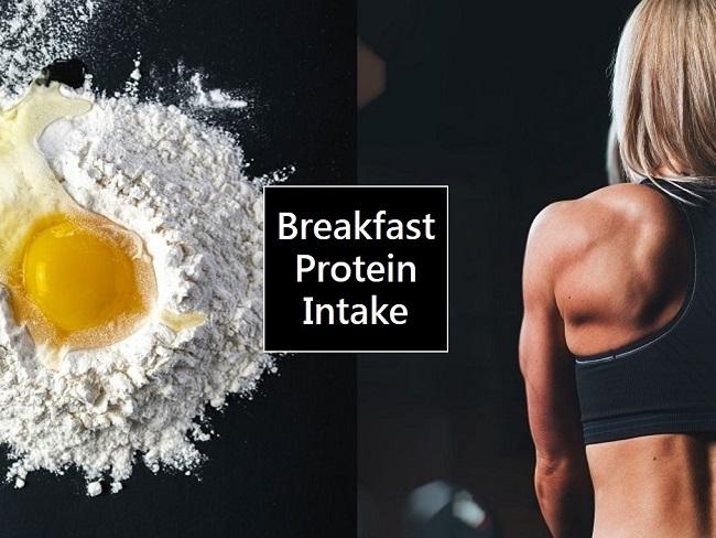 早餐攝取蛋白質的重要
