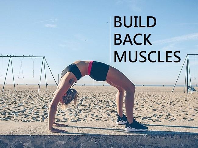 打造背部肌肉