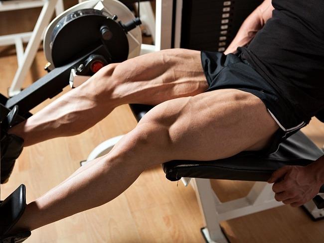 腿部伸展訓練