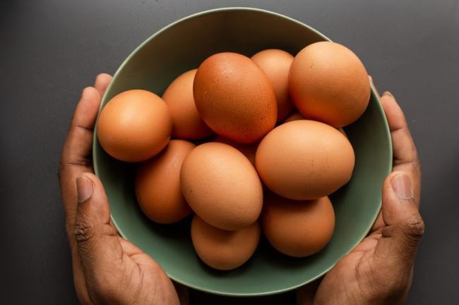 雞蛋的蛋白