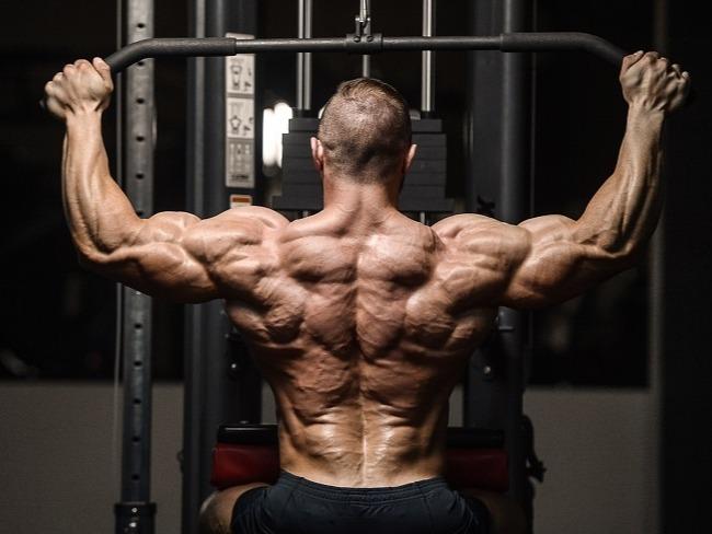 全身肌力與肌肉量