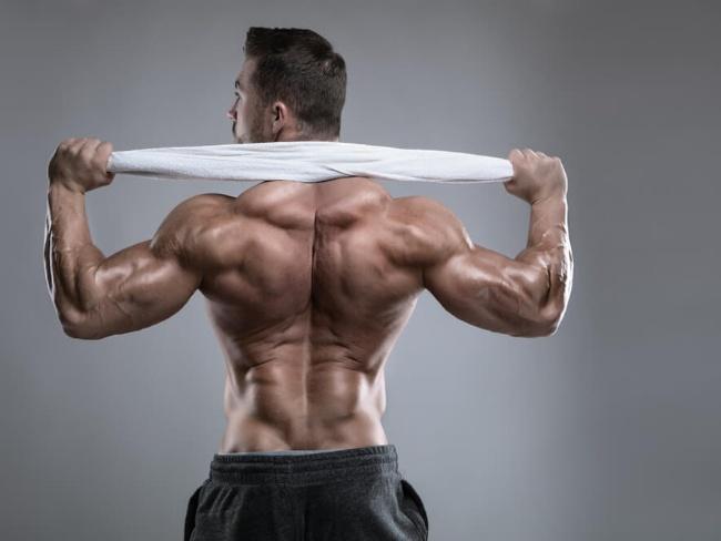 肌肉量與新陳代謝