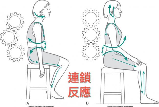 骨盆滾動法的連鎖反應