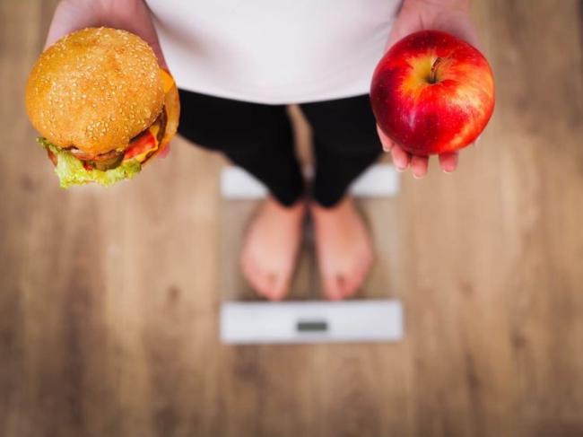減肥一定要先吃飽!  新陳代謝科醫師提健康飲食3大重點與餐盤示範