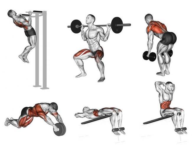 你真的了解怎麼做肌力訓練﹖  3分鐘搞懂重點知識與如何設計健身菜單