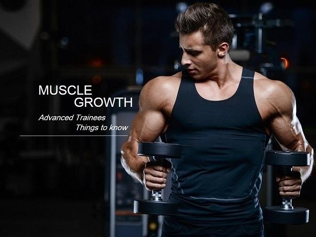 增肌跟訓練頻率的關係