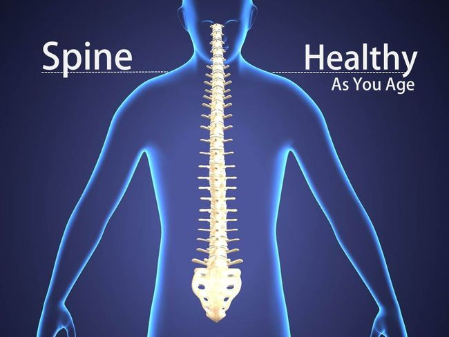 脊椎的年齡
