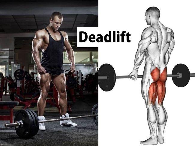 硬舉訓練臀腿肌力
