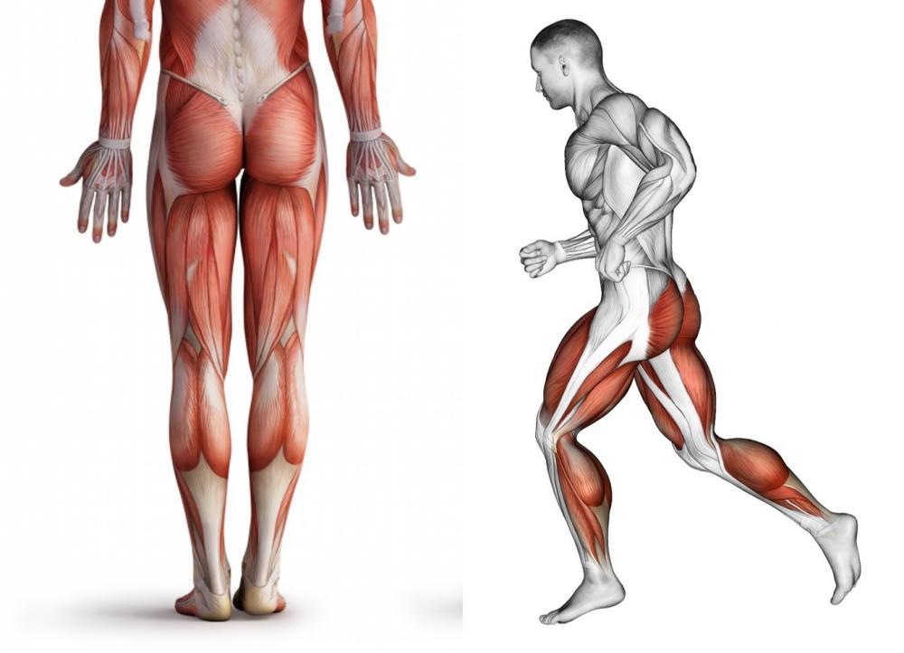 5招小腿訓練   助你提高步幅和步頻、跑得更快﹗